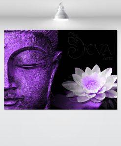 lord-of-light-purple